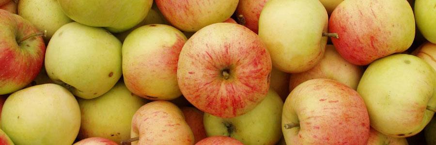 Разгрузочный день на яблоках