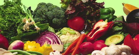 Варианты белково-овощной диеты
