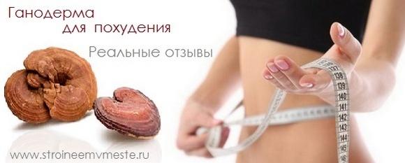Ганодерма для похудения отзывы